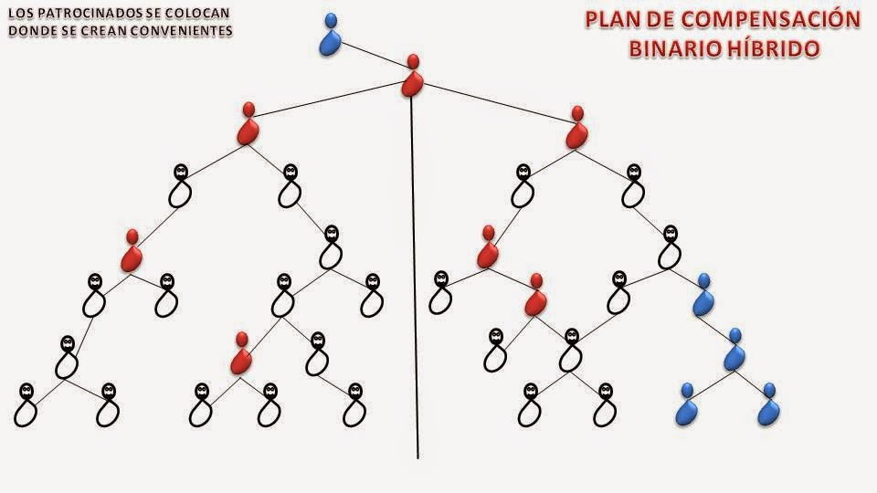 Forex sistema binario