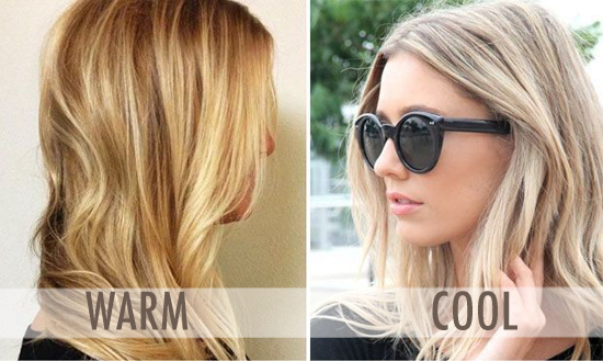 Ash Hair Color Chart Tones with Highlights  Pictures