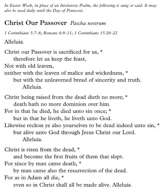 anthem 4 essay example