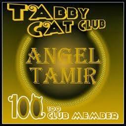 Angel Tamir is in the 100 club