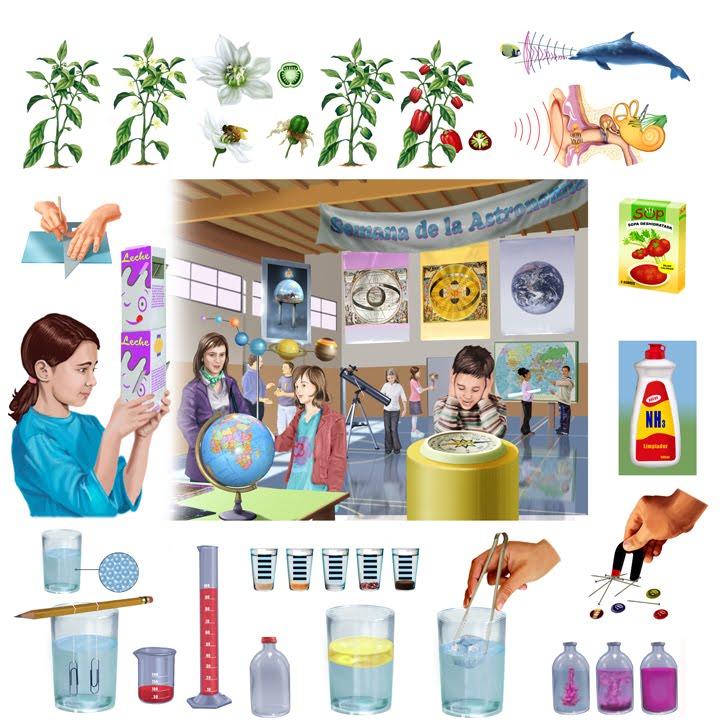 Ilustraciones para manual de ciencias