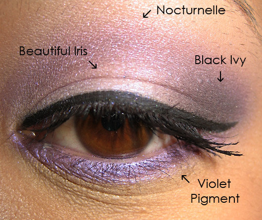 Thestylemongers Eyeshadow 2011 Pictures
