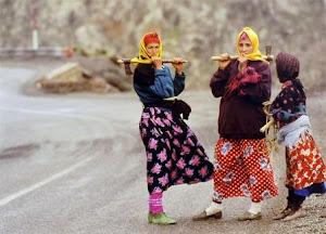 Pour les droits de la femme ouvrière forestière