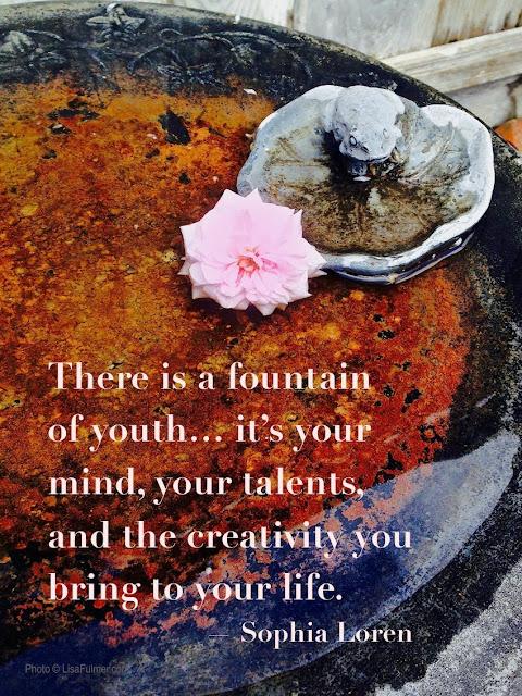 creativity is a fountain of youth sophia loren