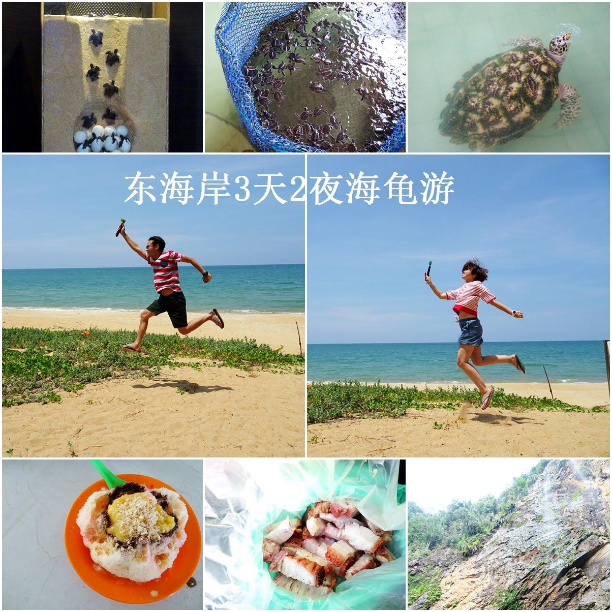 东海岸3天2夜海龟游总行程