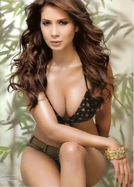 Kim Sharma Show Cleavage in Bikini Stills