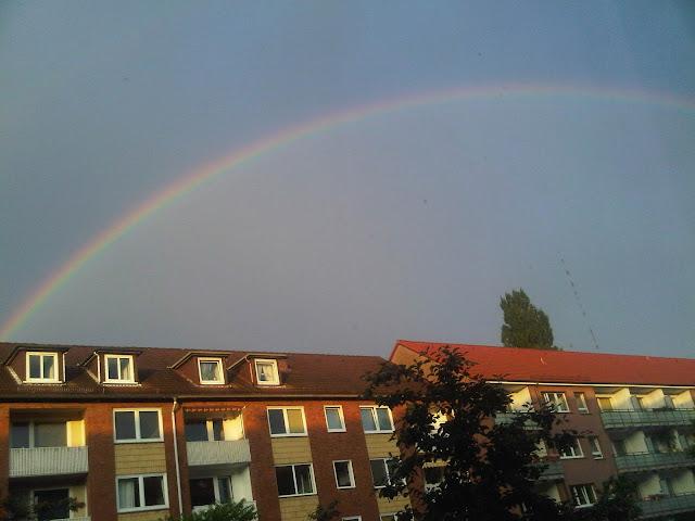 Bild Regenbogen über Hamburg