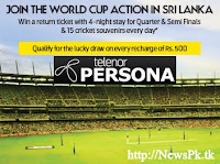 Persona Cricket craze