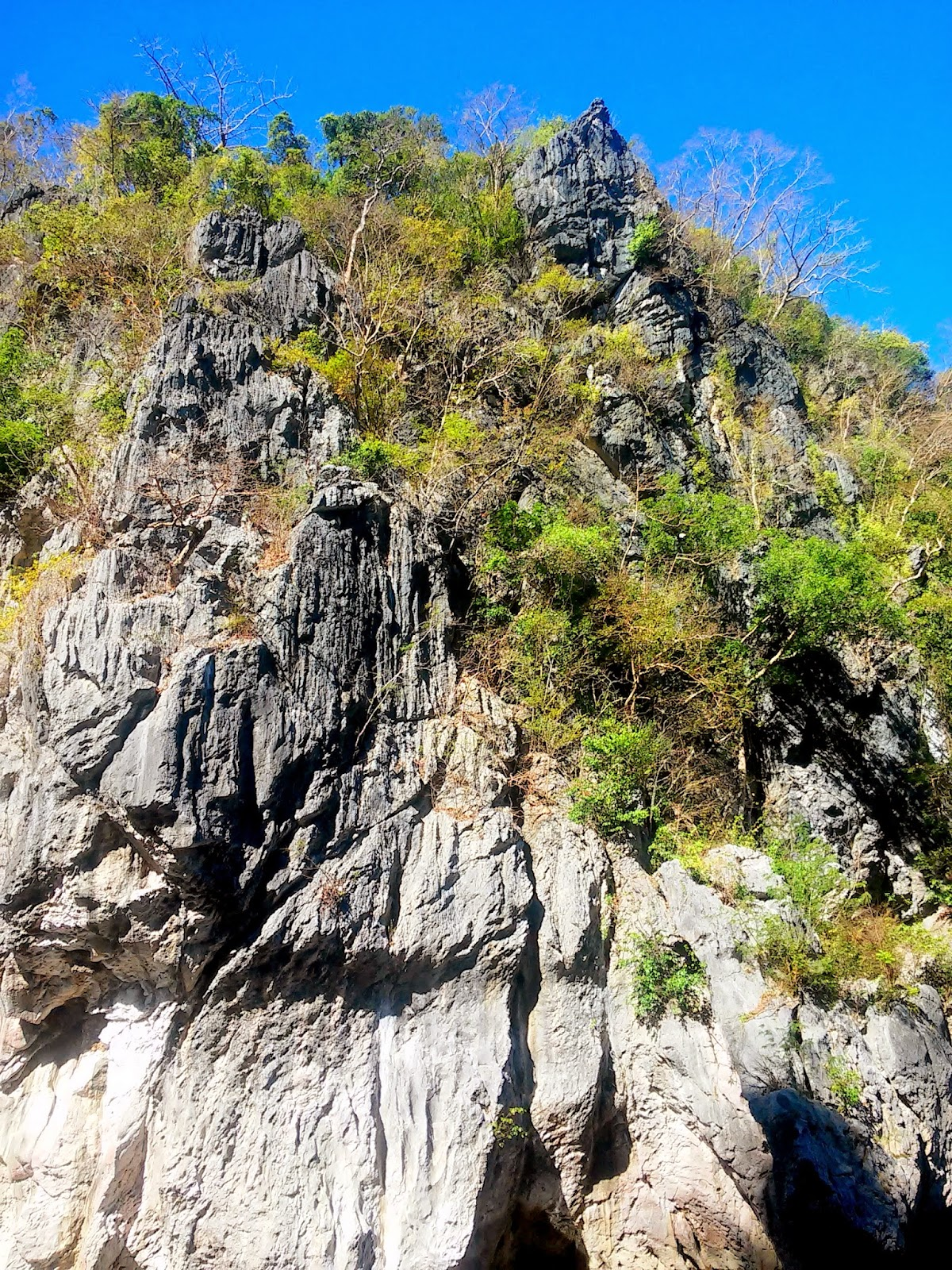 16 Meters High Limestone walls of Minalungao National Park