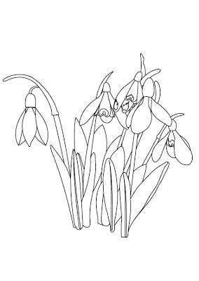Primavara - planse de colorat - 1 martie, 8 martie