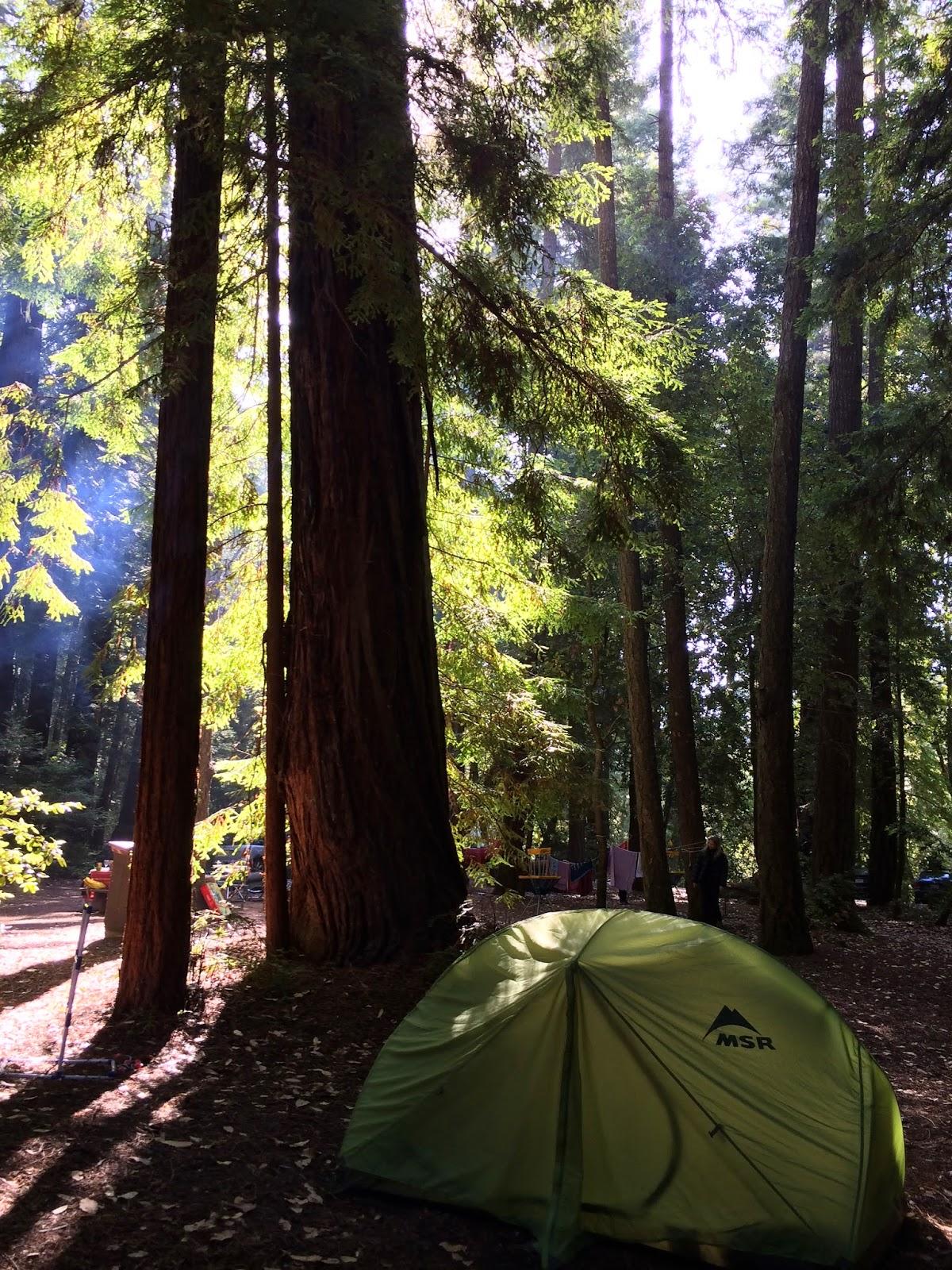 Hendy Woods State Park California