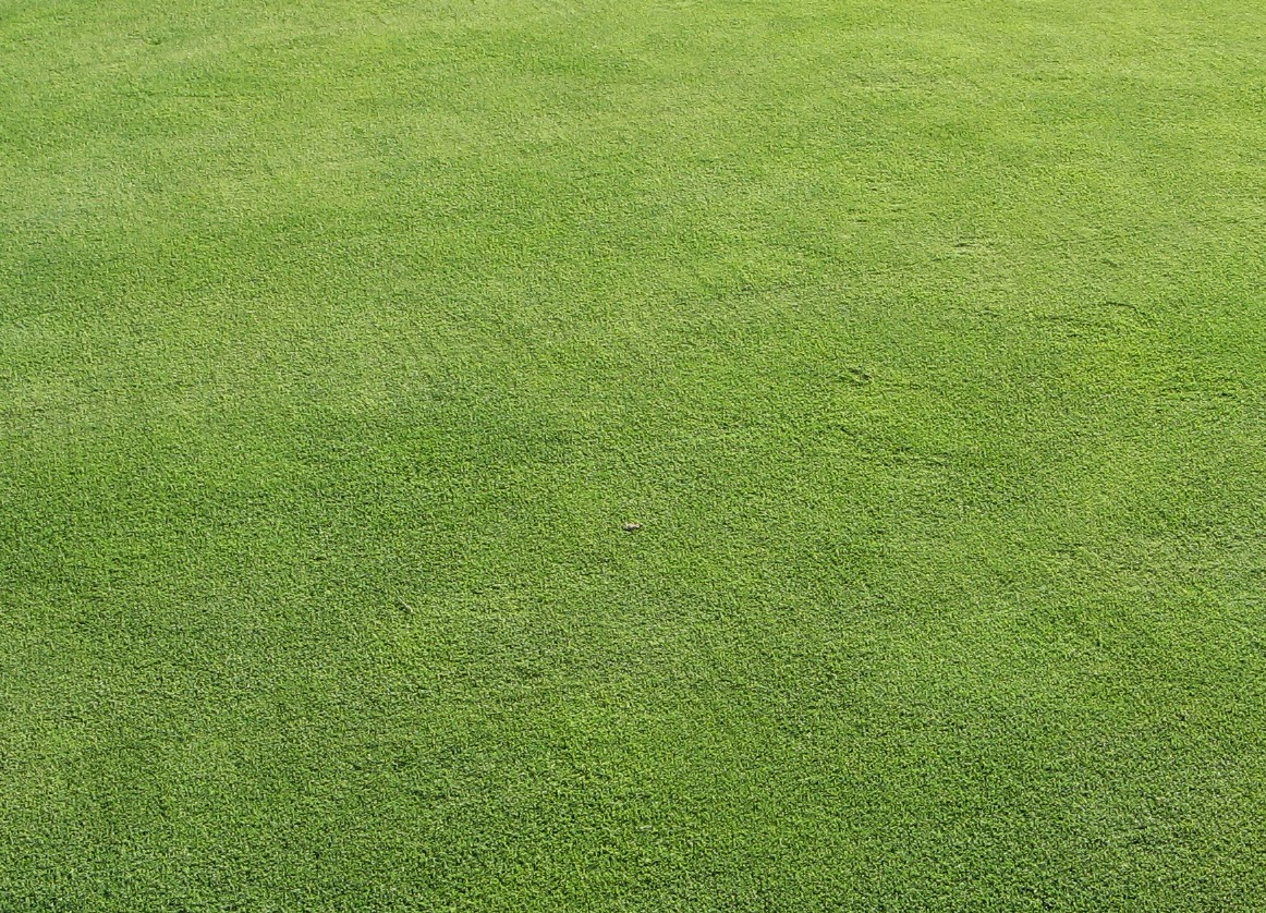 Purdue Turf Tips August 2014