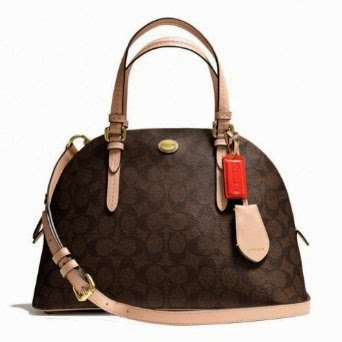 Coach Peyton Signature Leather Dome Satchel Brown