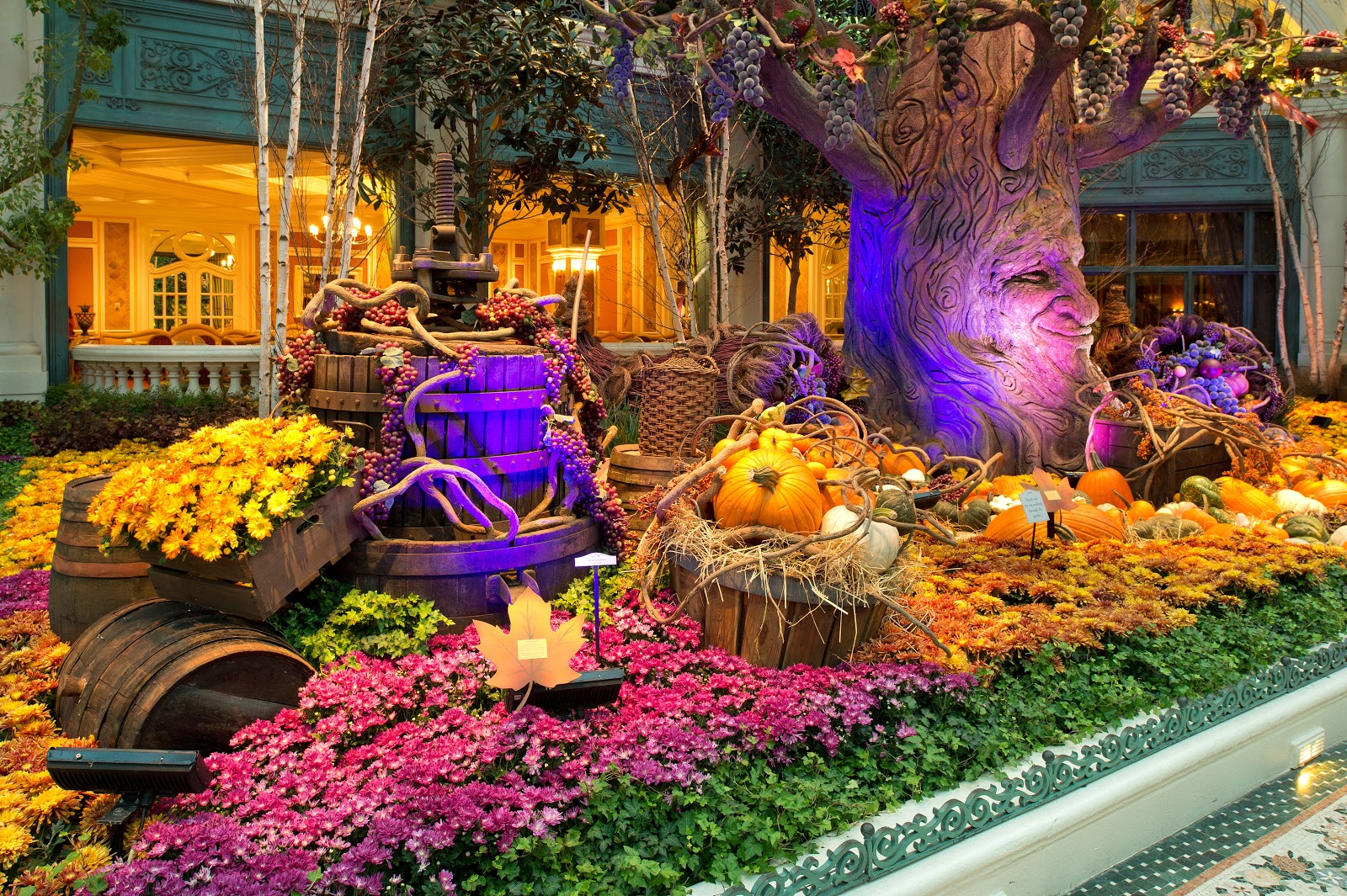 I Love Las Vegas Magazine Blog Beautiful Fall Harvest