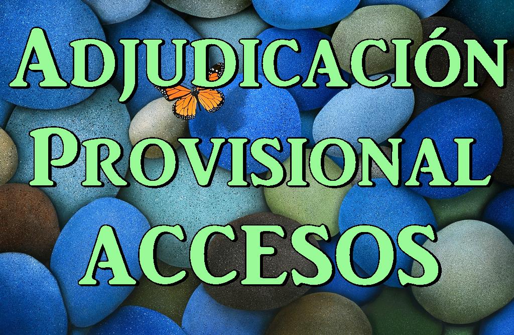 Adjudicación Provisional Accesos
