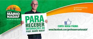 Vereador Professor Mario Nadaf