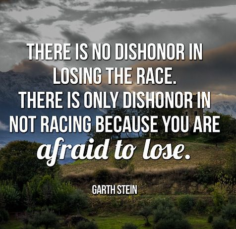 Quote book the art of racing in the rain garth stein for Rainwater harvesting quotes