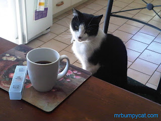 Image: Mr Bumpy sitting on a chair, at the dining table, with a cup of coffee in front of him.