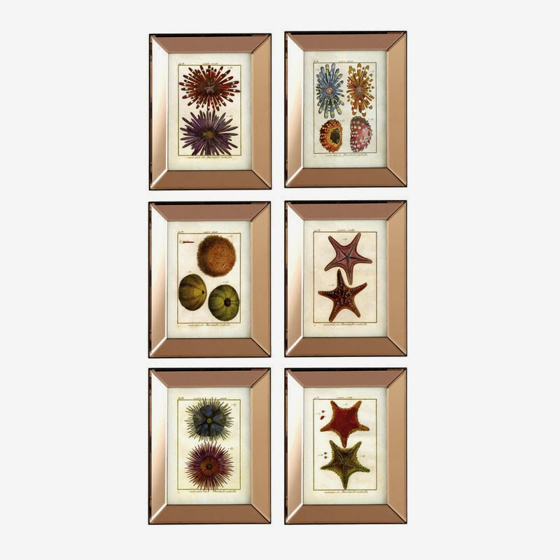 Sea Life Wall Art Set