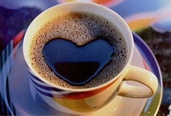 ganocafe coffee classic
