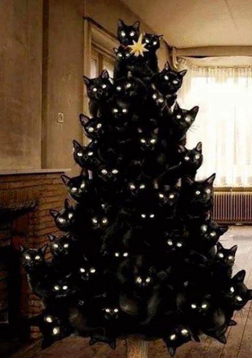 Kerstboom van katten