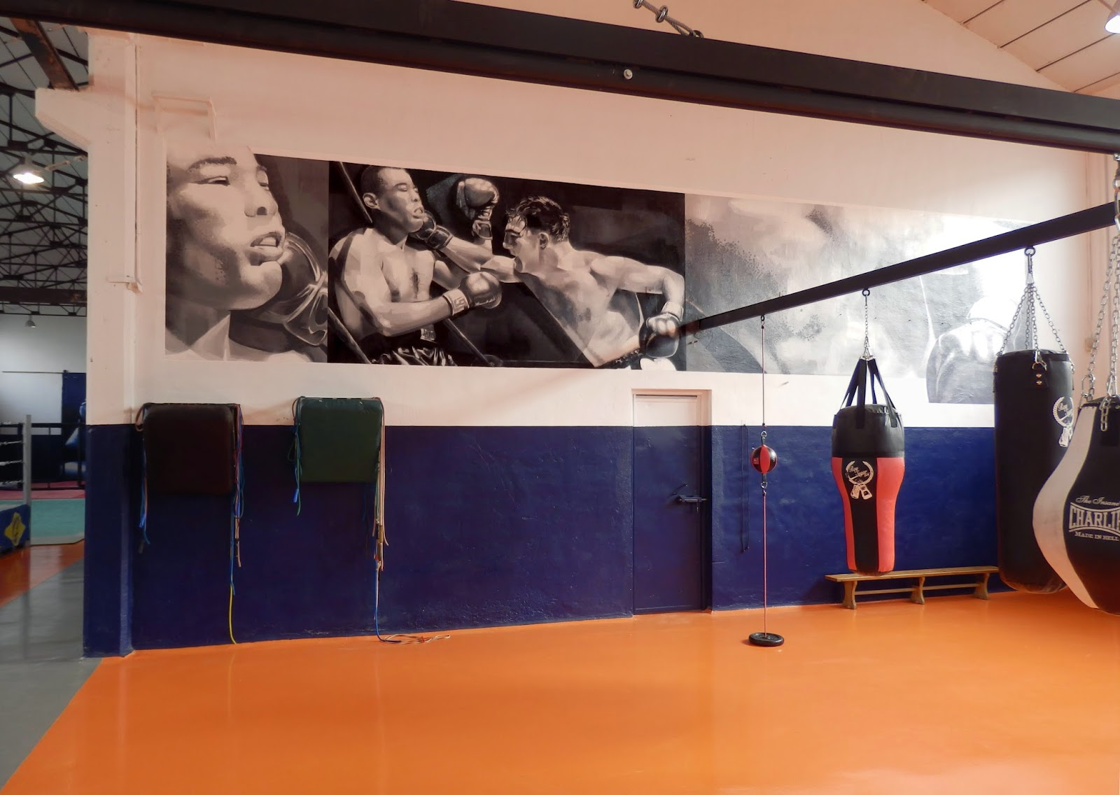 Gimnasio gasteiz sport fill in culture - Decoracion de gimnasios ...