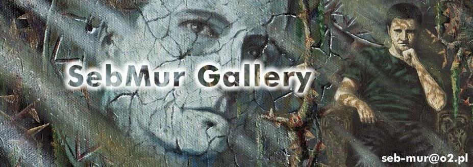 SebMur Gallery