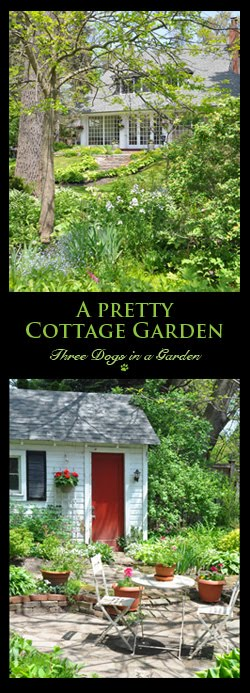 A Pretty Cottage Garden