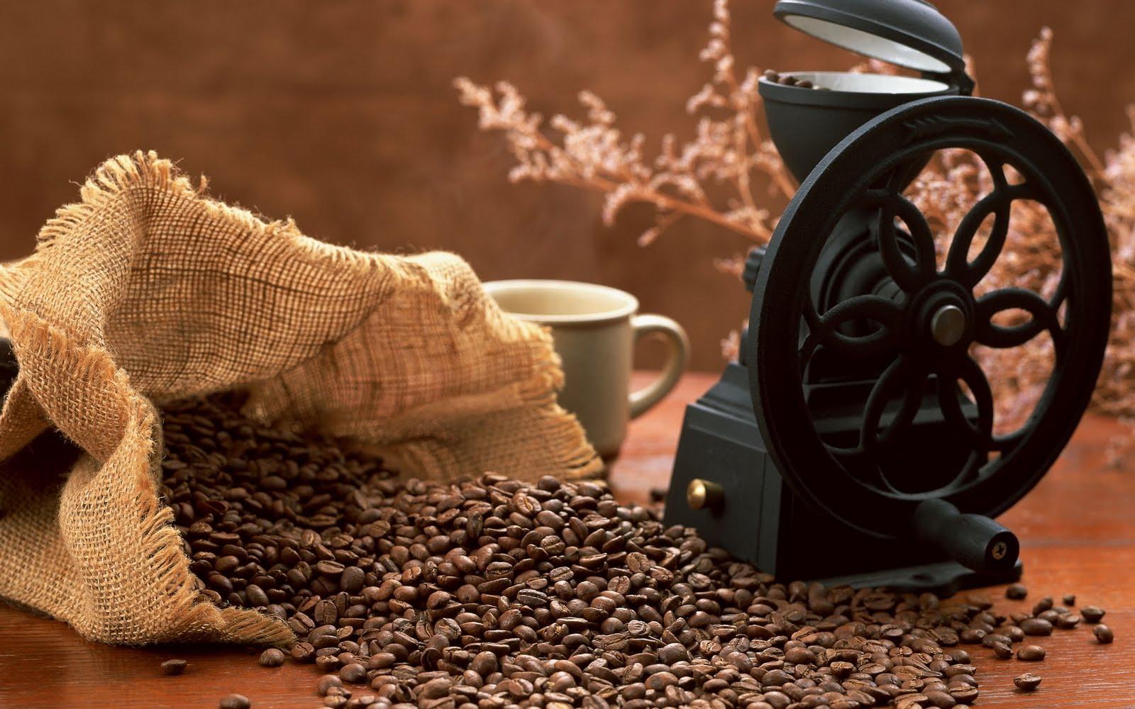 Molino de café | Coffee grinder