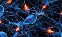 ميزة العلاج بالخلايا الجذعية