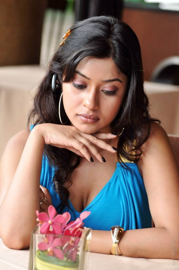 , Payal Ghosh Photo Gallery