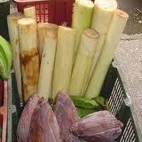 Bonggol pisang - suryapost.com