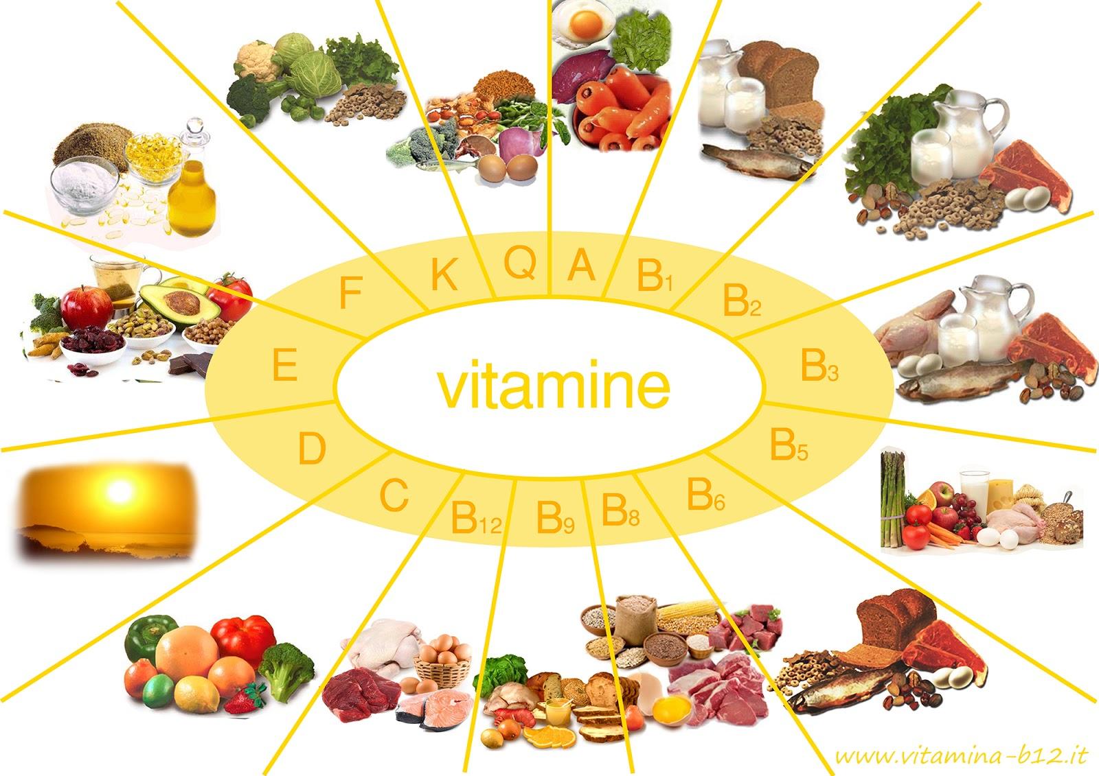 alimente vitamina b12