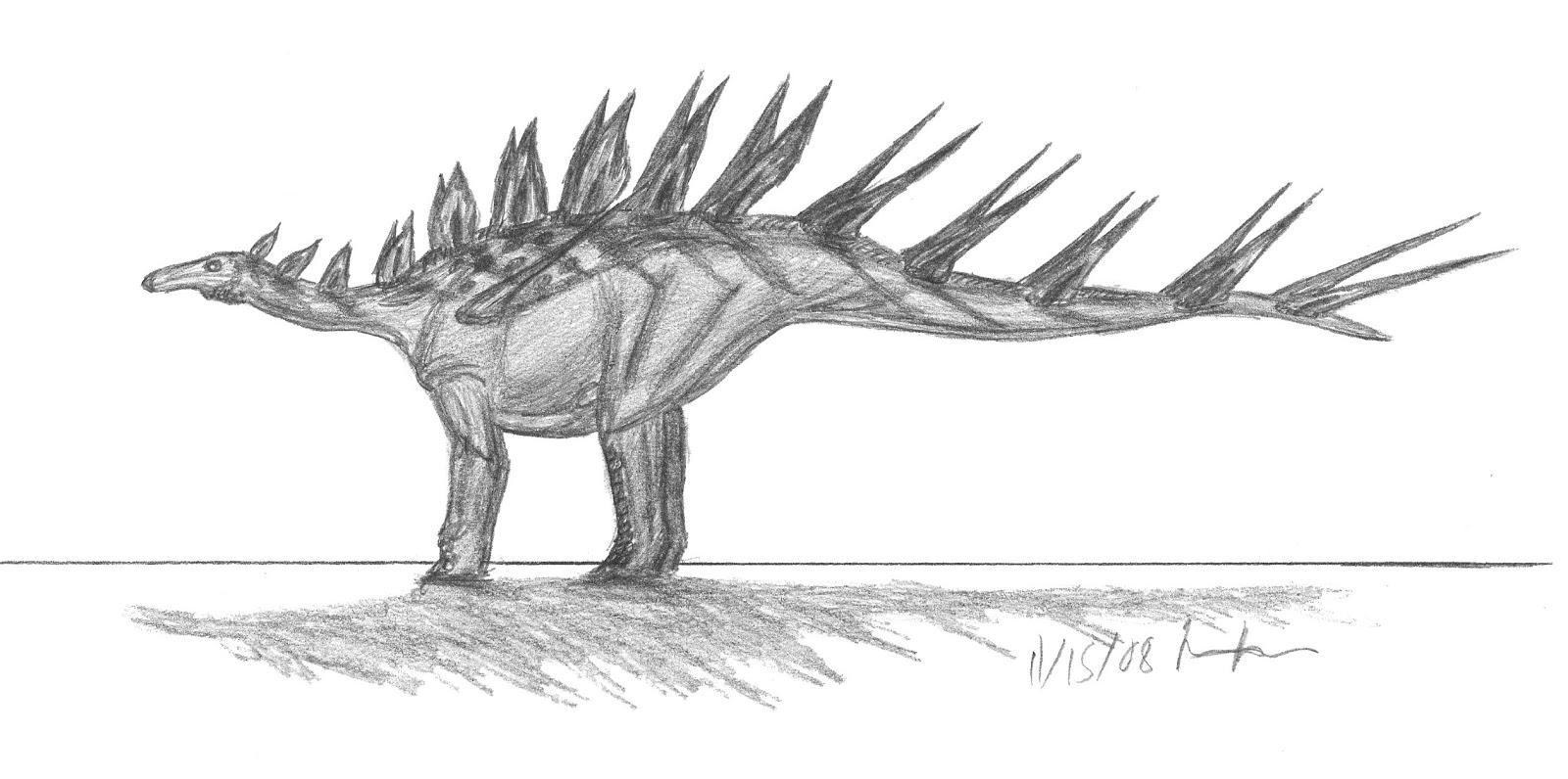 kentrosaurus coloring pages - photo#24