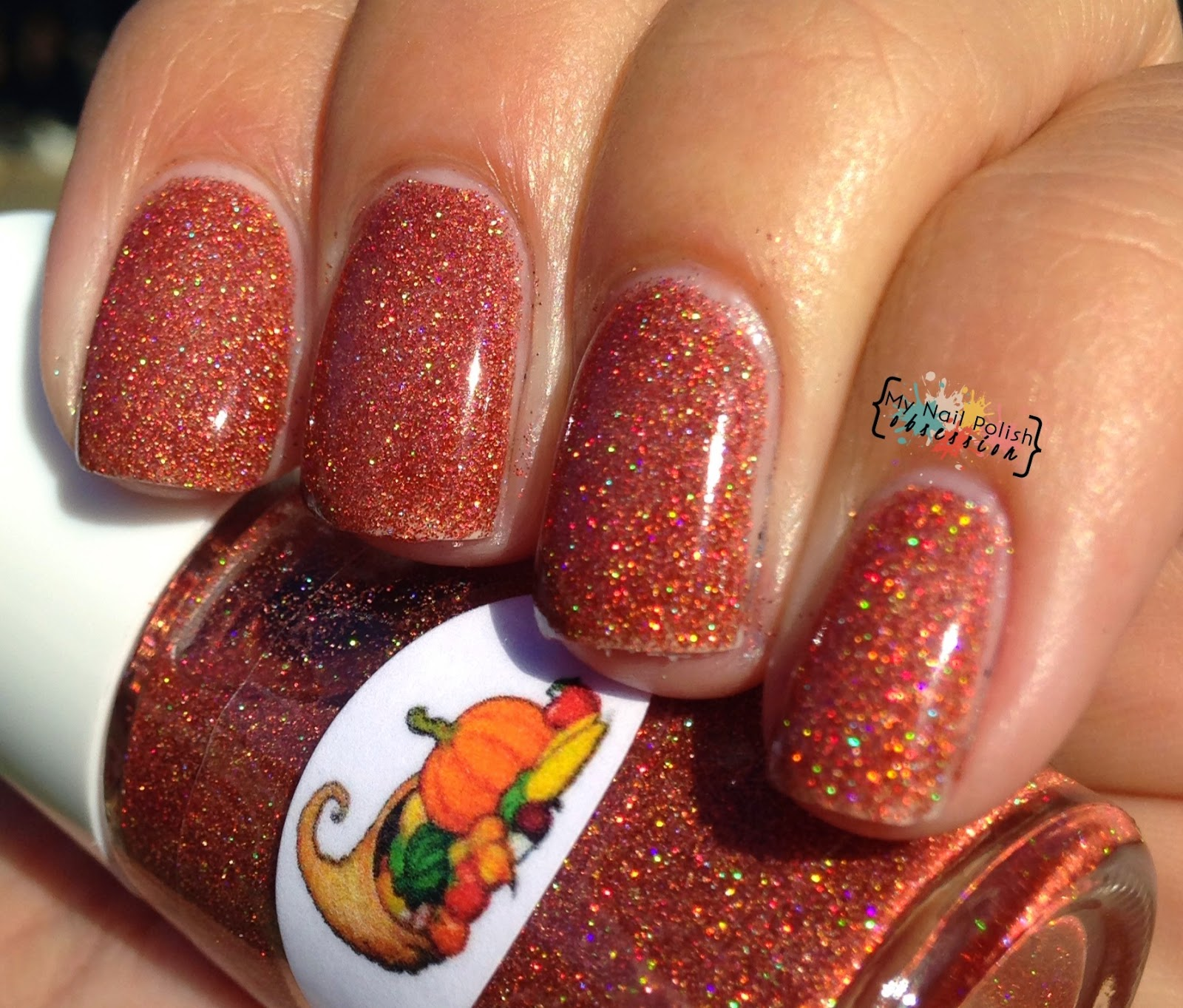 The Nail Junkie Cornucopia