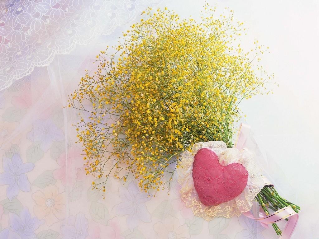 http://2.bp.blogspot.com/-pzCOoBxpEPE/ThpaV8GSkGI/AAAAAAAAECA/fn3E3y57c1g/s1600/yellow-flowers-love-wallpapers_12554_1024x768.jpg