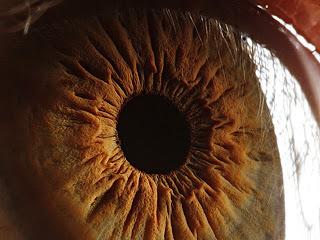 penyakit mata untuk Kesehatan Mata