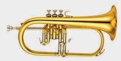Flugel Horn