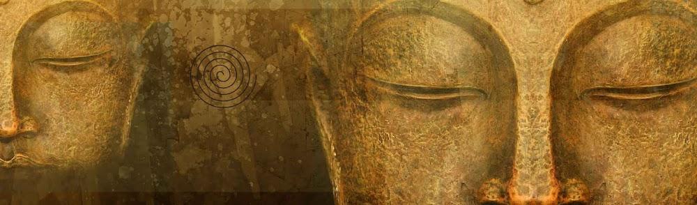 Bodhi Wisdom