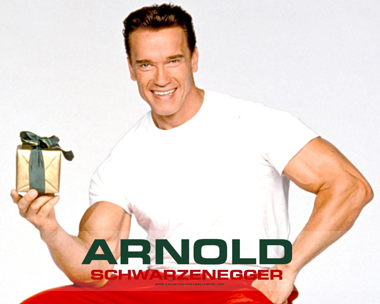 http://2.bp.blogspot.com/-q-D1a9Kl2Rc/T7eKbwOLP1I/AAAAAAAAEew/_nViVmcI-qs/s1600/Arnold+Schwarzenegger+new+pic+2012+06.jpg