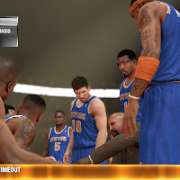 NY Knicks during Timeout