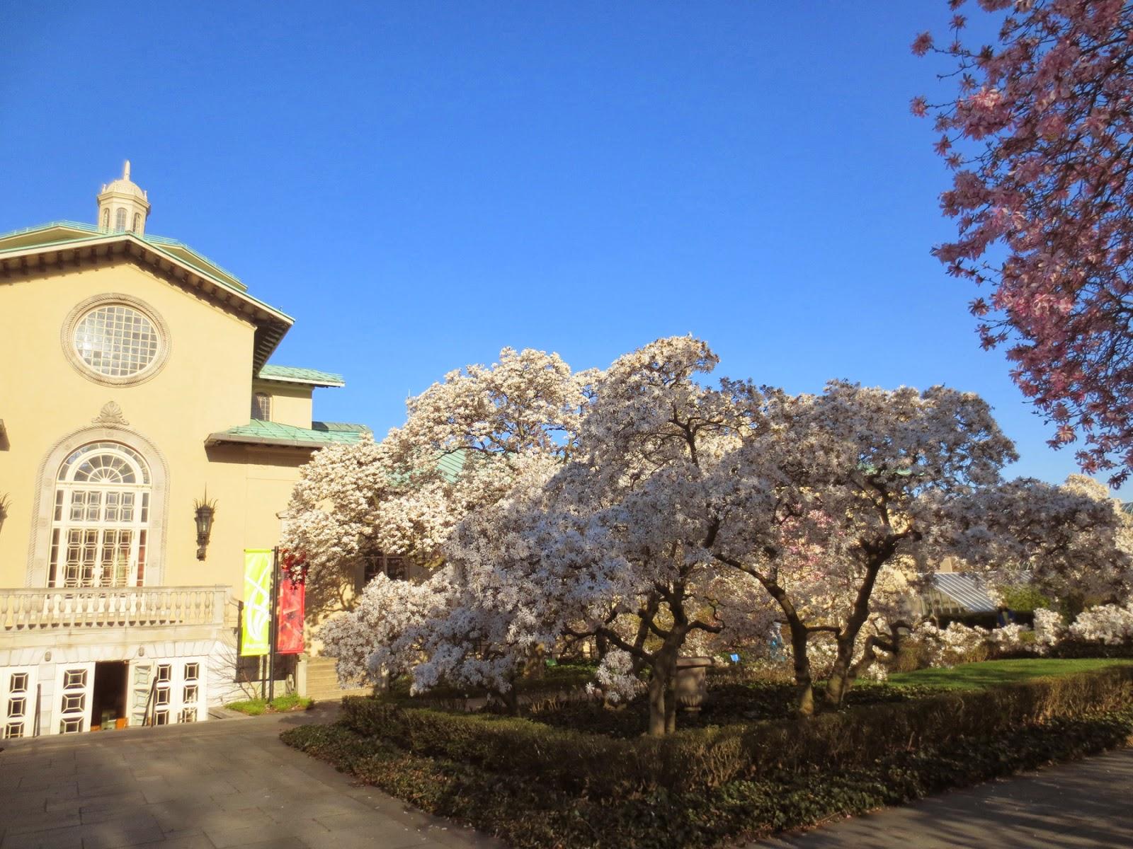 big apple secrets brooklyn botanic garden