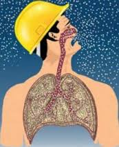 Obat Penyakit Silikosis Tradisional