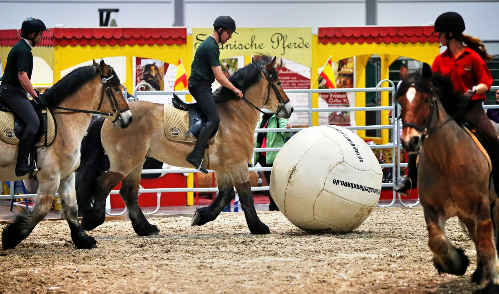 Agriculture, Animal, Blankets, Exhibition, Fair, Feed, Football, Germany, Horse, Leipzig, Luxury, Partner Pferd, Soccer, Sports,
