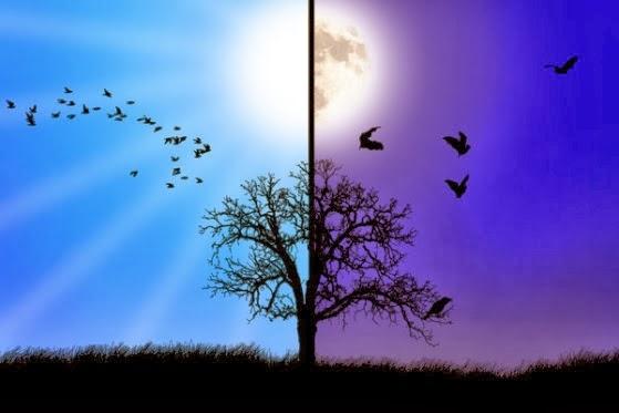Wiccan Moonsong: Decem...