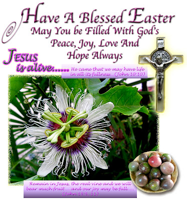 An Easter 2011 greeting card with images of a crucifix &amp; a flower+fruits of the Passiflora edulis (Passion Fruit) vine