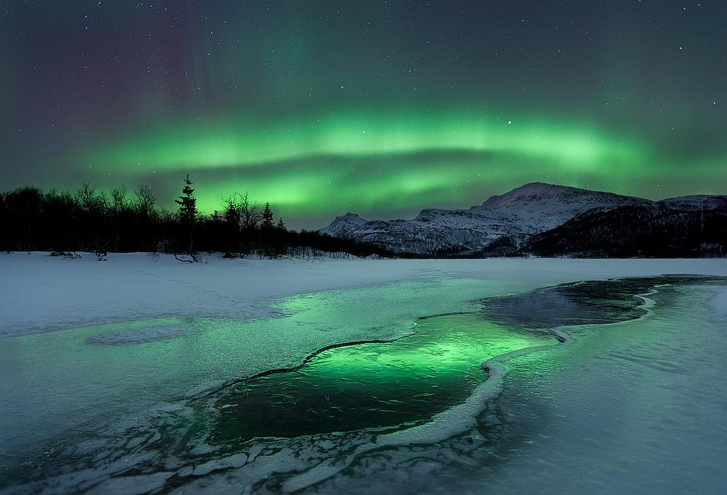 Aurora Laksaa