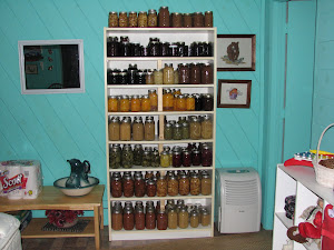 The Canned Goods Shelves