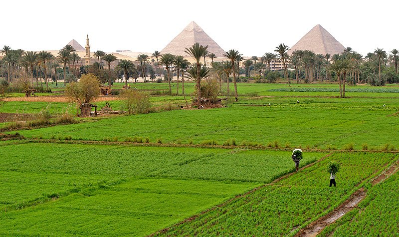 Is Egypt All Desert Cairo Diaries Of Five - All deserts