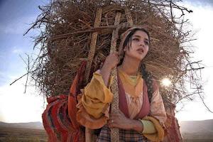 Pour de bonnes conditions de travail de la femme paysanne